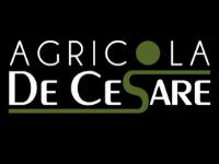 Agricola De Cesare